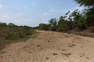 Swaziland är drabbat av svår torka!